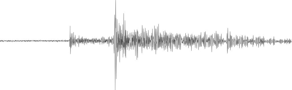 A seismogram readout from Mars.