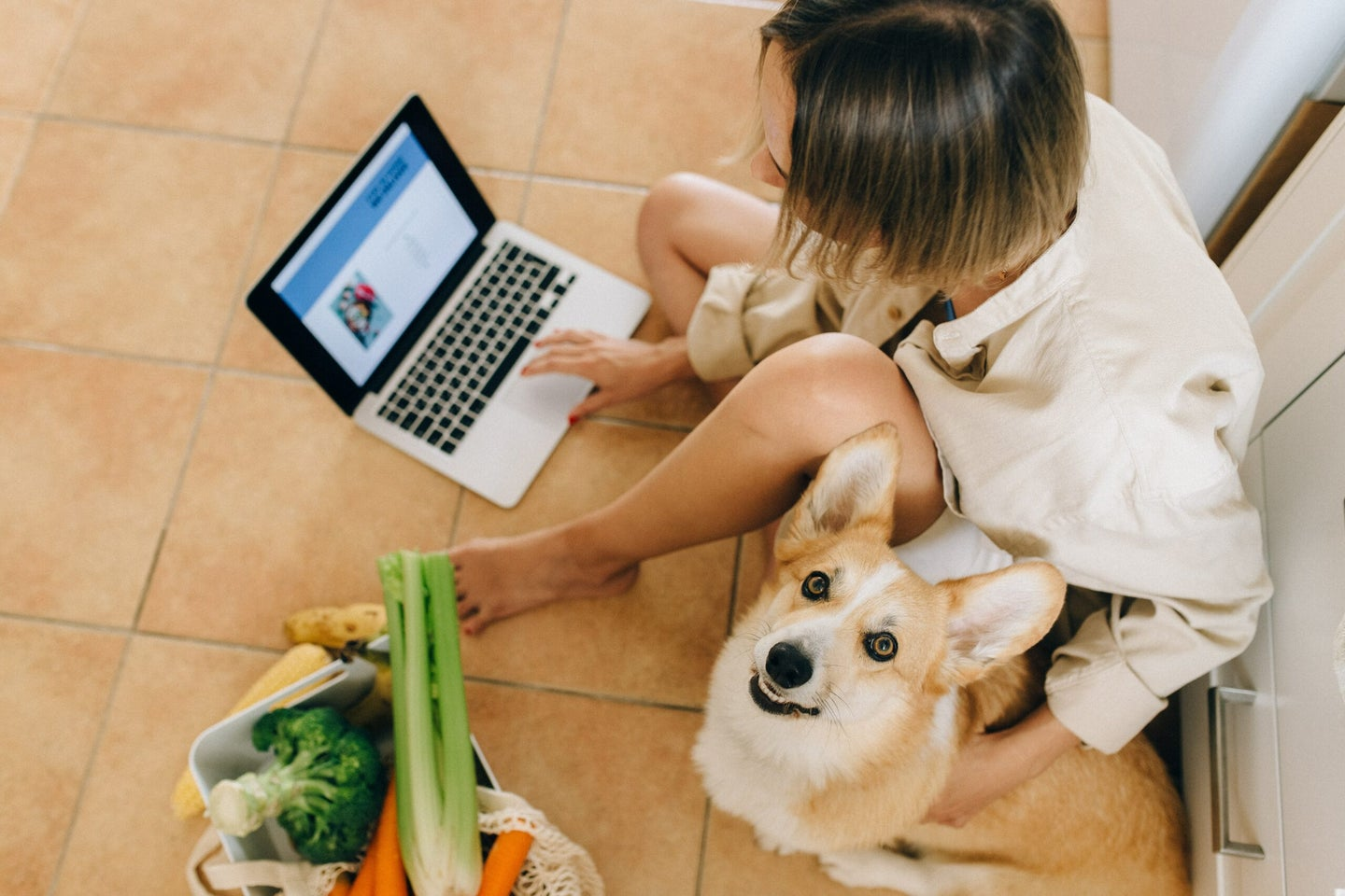 Woman on laptop with dog and bag of vegetables.