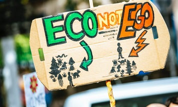 What is ecocide, and why might it be criminalized worldwide?