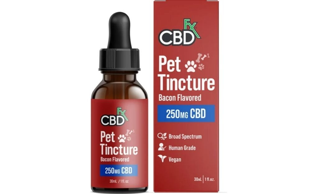 Best CBD oil for dogs with arthritis