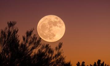 Enjoy breathing oxygen? Thank the moon.