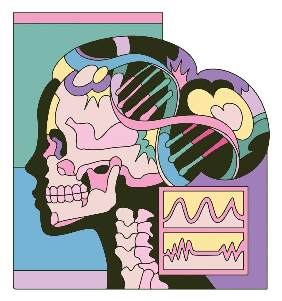 Skeleton, heartbeat, DNA, temperature graph