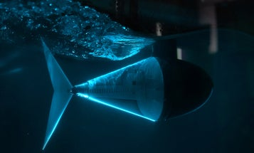 A tuna robot reveals the art of gliding gracefully through water