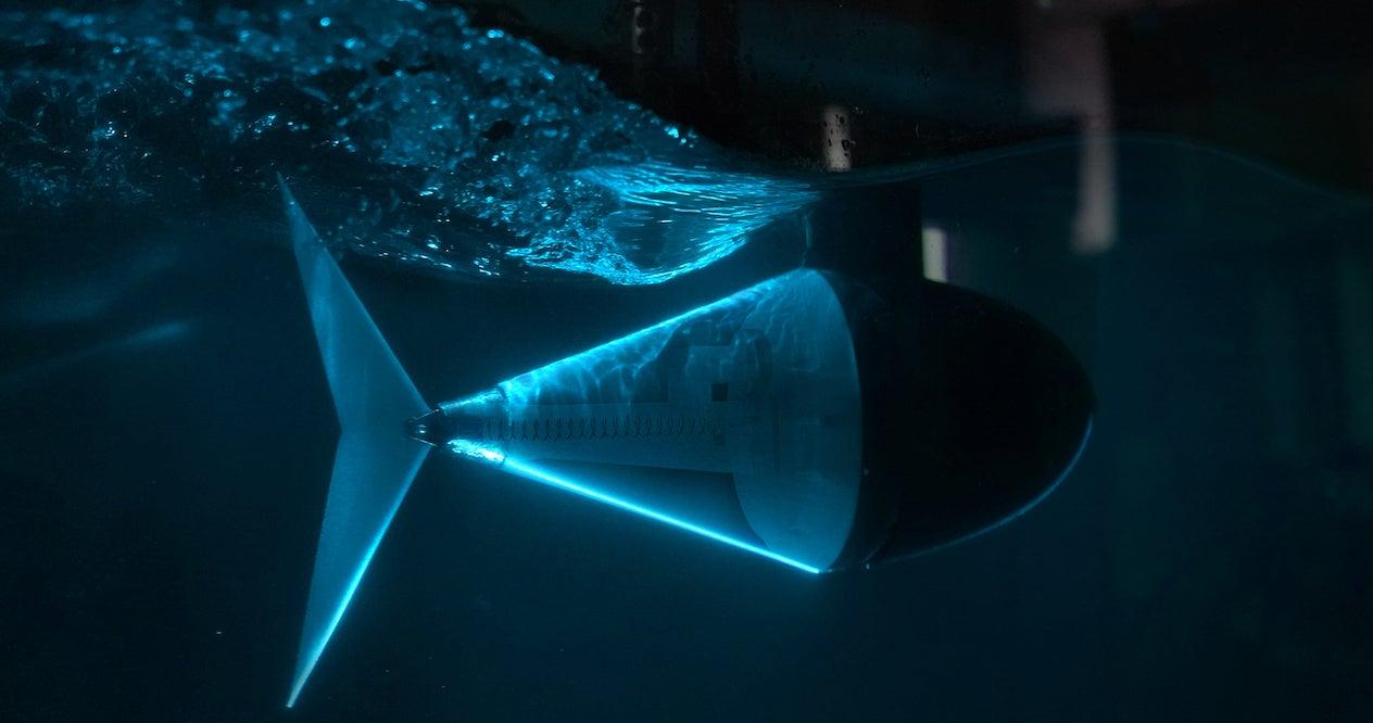 Tuna Robot With Internal Overlay