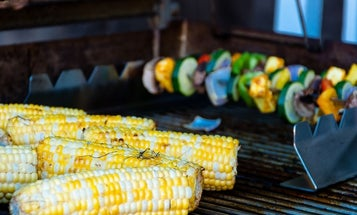 Best gas grill: BBQ grills worth your money and your backyard