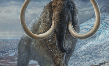 Researchers retraced a woolly mammoth's steps 17,000 years after it died