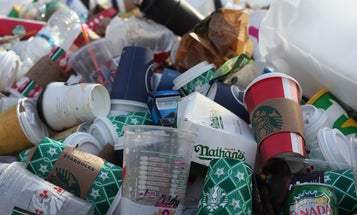Your compostable cups and containers aren't reversing the plastic problem