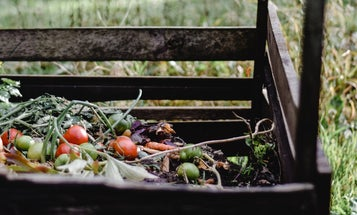 How to keep food, plastic, and fabric out of the landfill