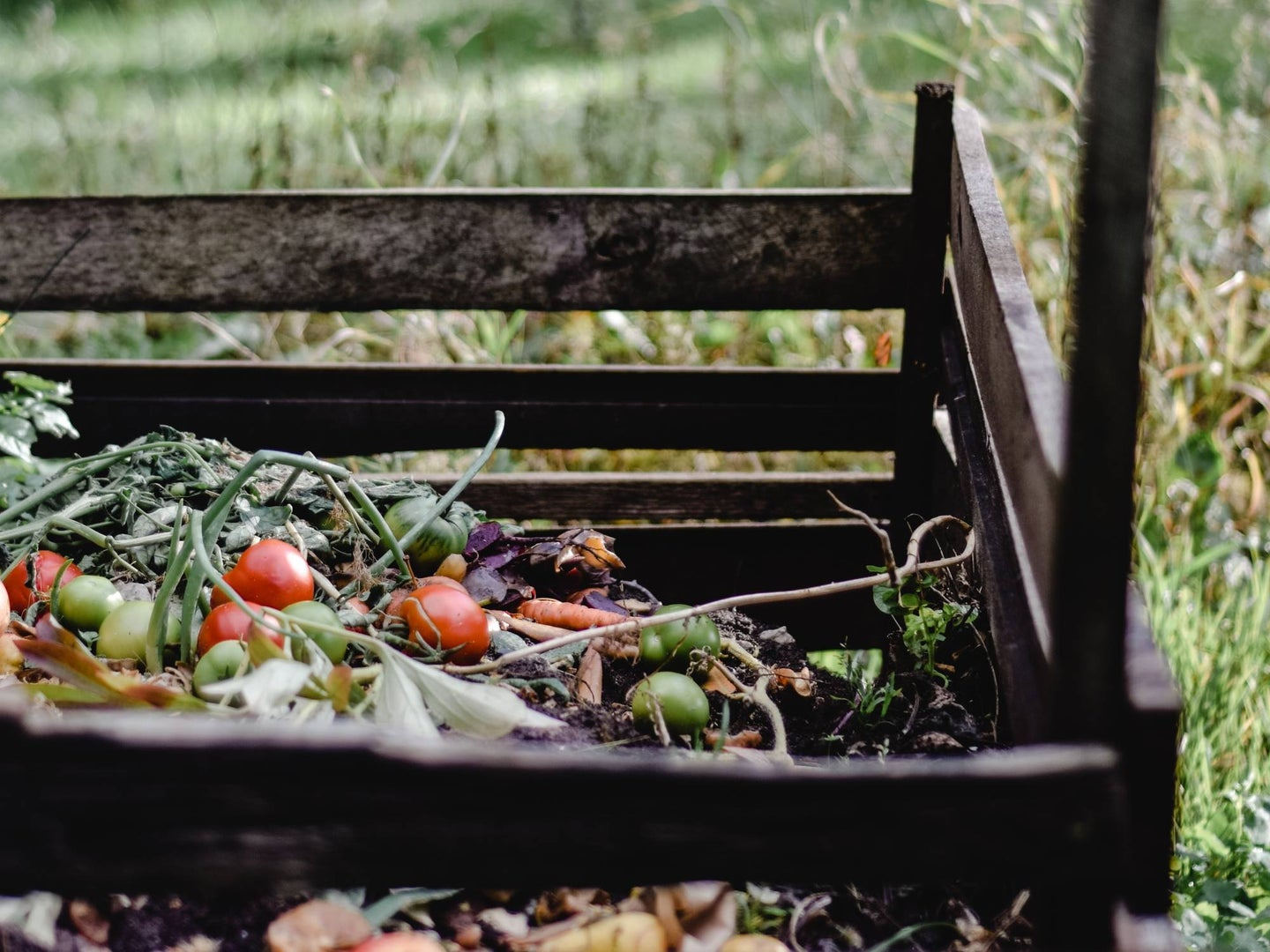 outdoors compositing pile with veggies