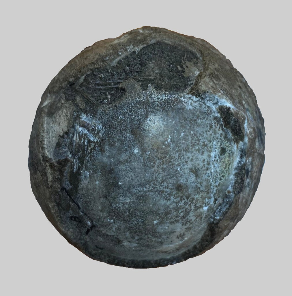 A bluish-black rock about the size of a tennis ball.