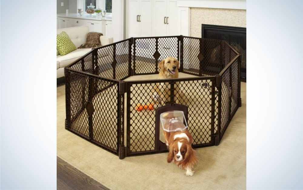 The North States Mypet Petyard Passage is the best dog pen for indoors.