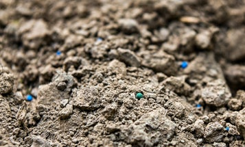 Soil tests are the secret to a bountiful home garden