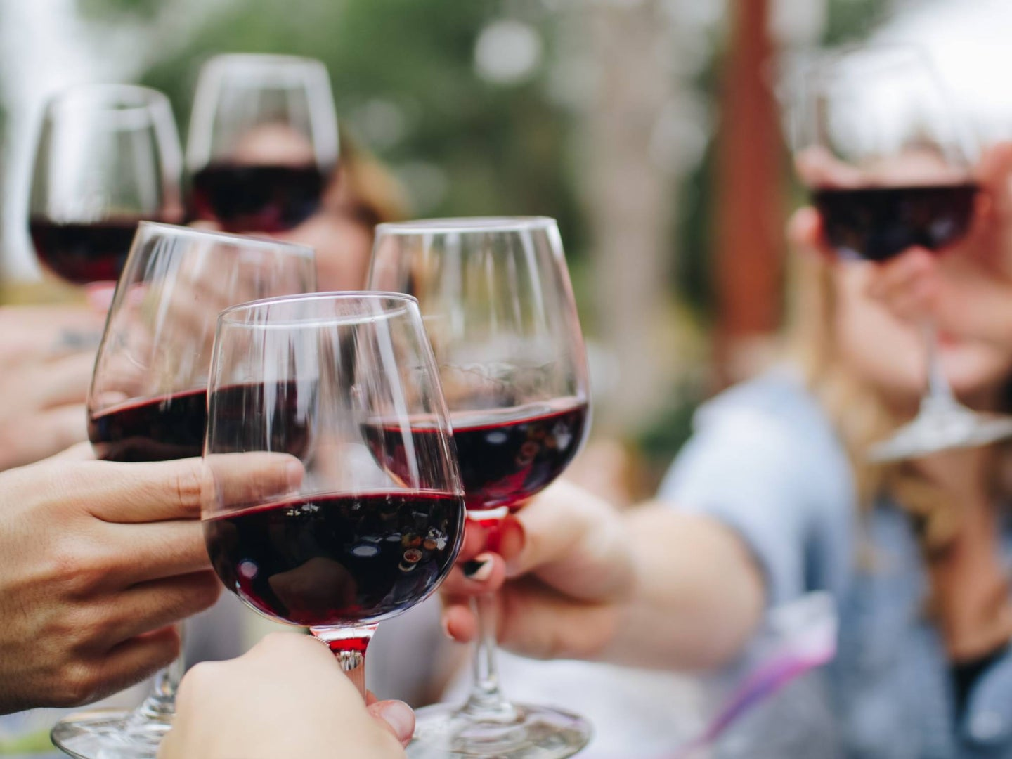 people-outdoors-toasting-with-glasses-of-wine