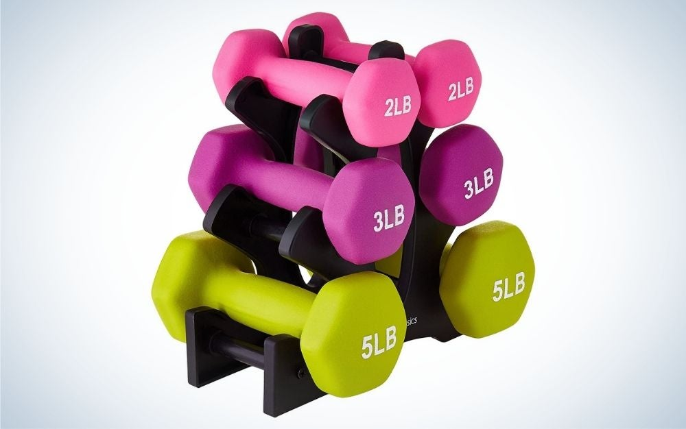 Amazon Basics Dumbbell Hand Weight Set is our pick for best home workout equipment.