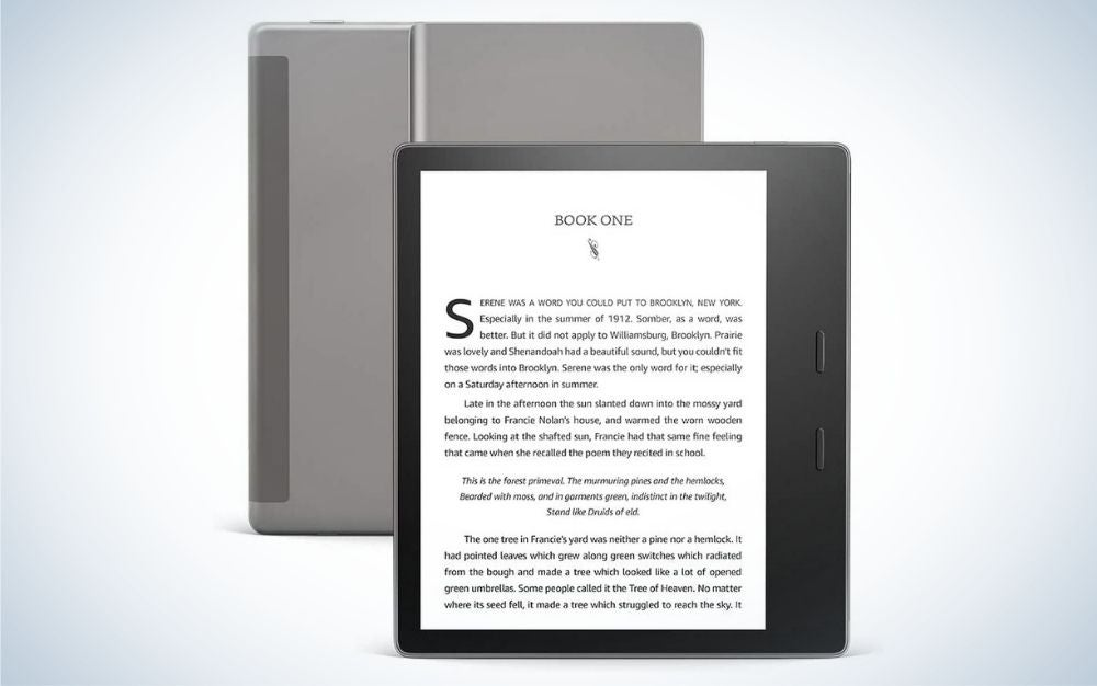 Kindle Oasis our pick for the best eReaders.