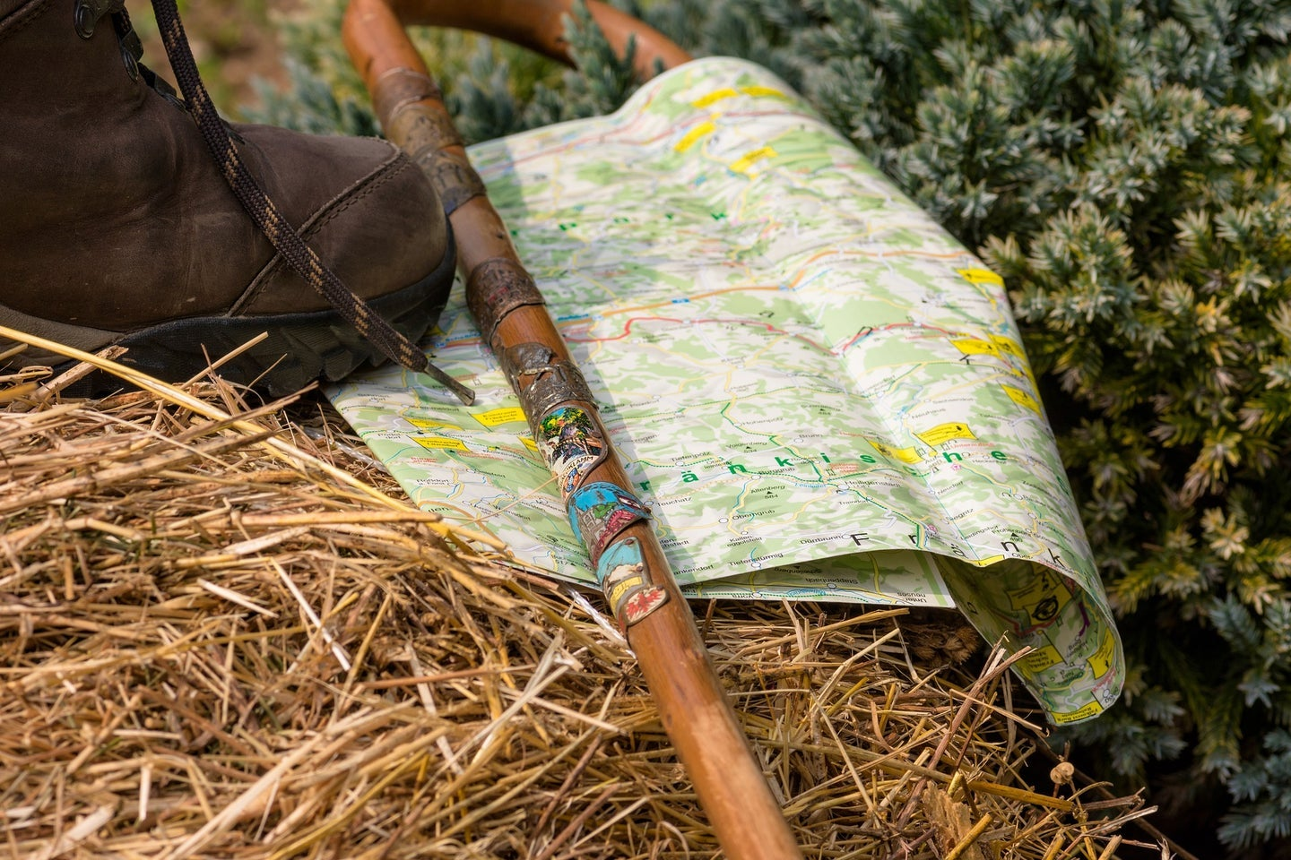 Walking stick over map in the woods