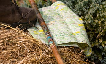 7 reasons a walking stick is your best hiking buddy