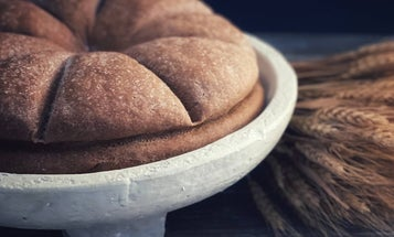 Eat like an ancient Roman by recreating bread from Pompeii