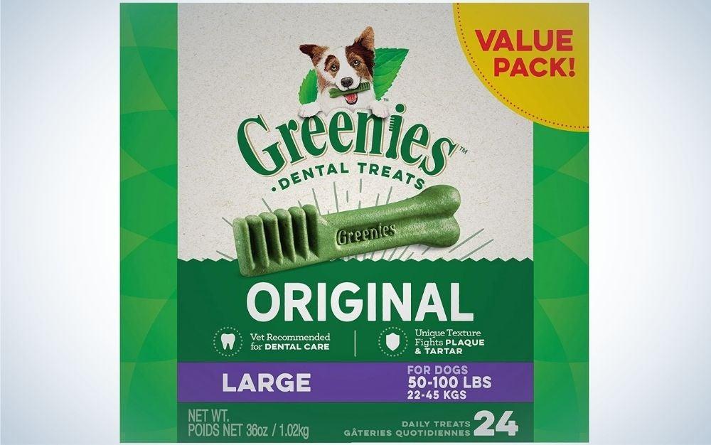 Best_Dental_Chews_for_Dogs_Greenies