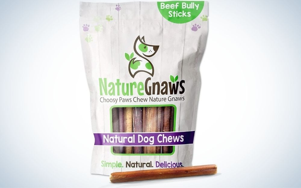 Best_Dental_Chews_for_Dogs_Nature_Gnaws