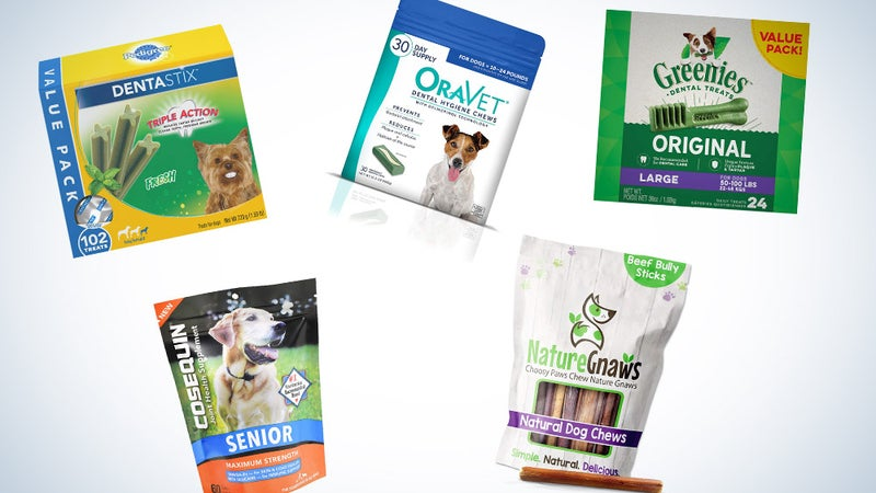 Best dental chews for dogs to brush up on oral health