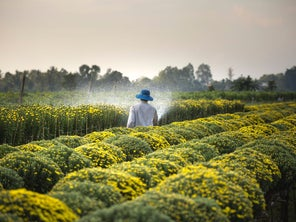 Rerouting billions in agriculture subsidies could boost global food security