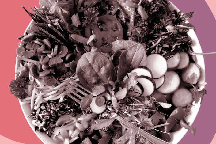 Sustainable diet of salad on a pink and purple background