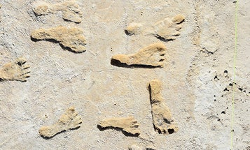 These footprints could push back human history in the Americas