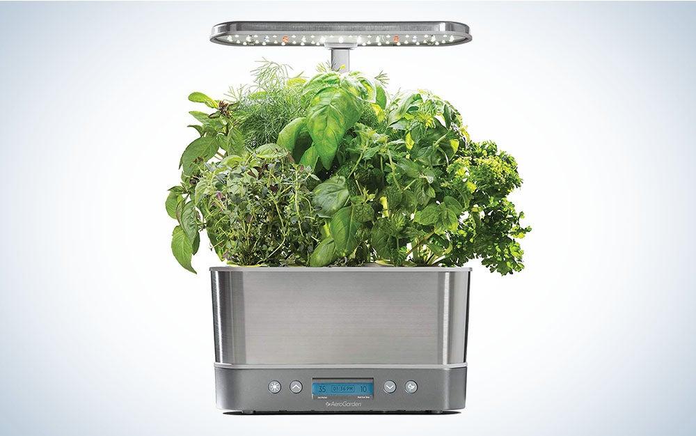 AeroGarden Harvest Elite is the best indoor herb garden with a grow light.