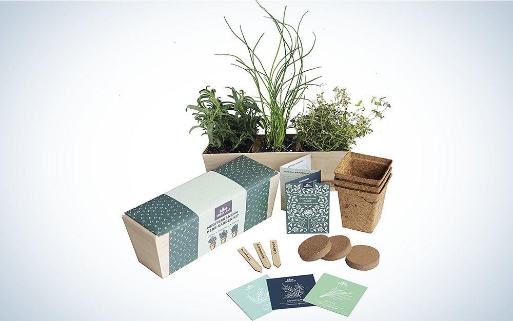 Urban Leaf Herb Garden Starter Kit is the best indoor herb garden starter kit.