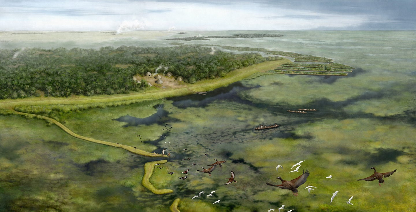 rendering of human shaping of amazon rainforest