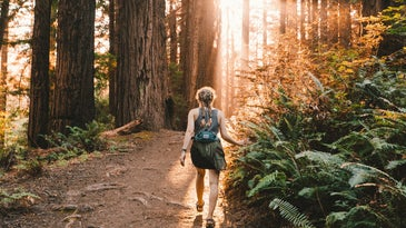 A person hiking alone on a trail without any crowds, moving through the forest toward the setting sun.