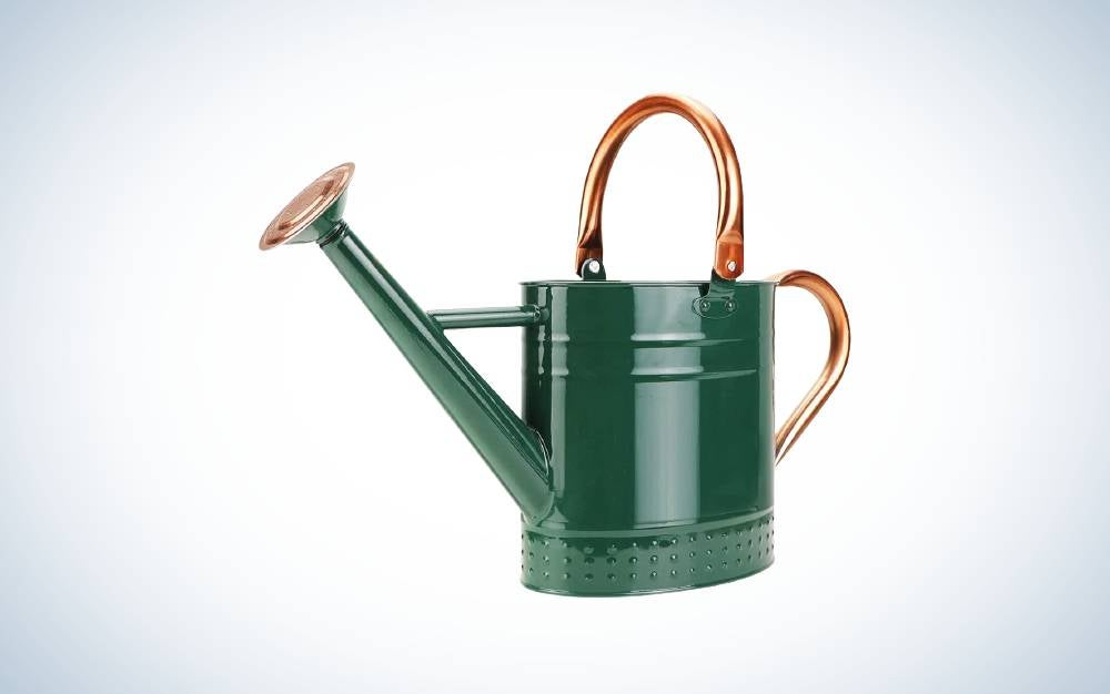 Megawodar 1 Gallon Galvanized Steel Watering Can is best watering can for outdoors.