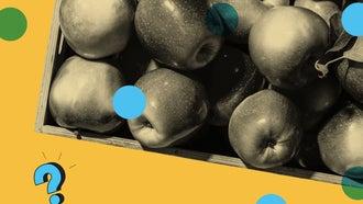 art illustration with a bushel of apples