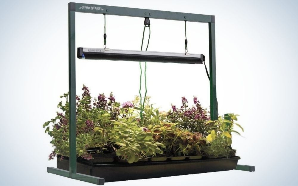 Jump Start is our pick for best grow lights.