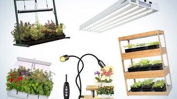 best grow lights
