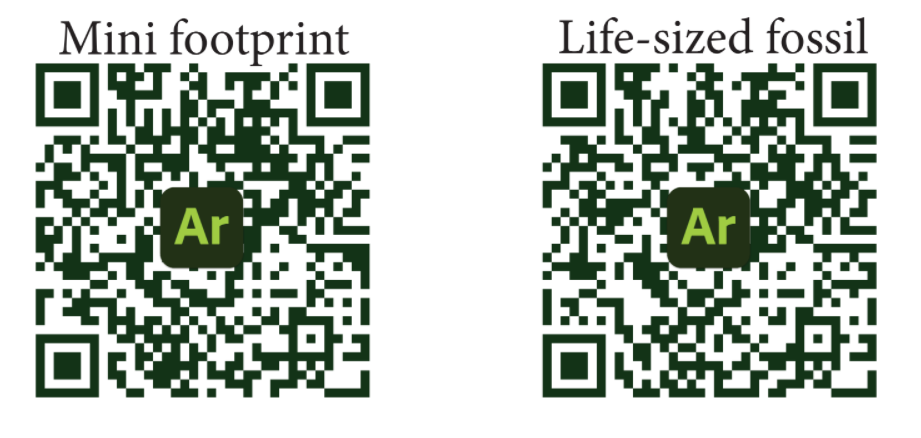 QR codes for augmented reality version of dinosaur on iPhone app Adobe Aero