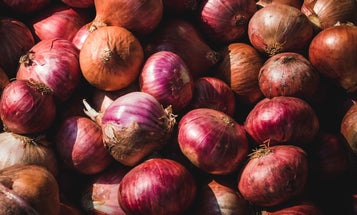 A salmonella outbreak has hit 37 states, and onions are to blame