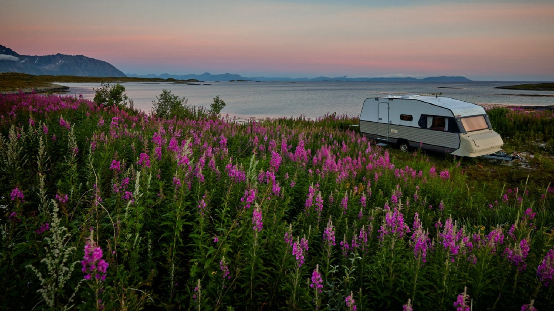RV van life on a beach with purple wildflowers
