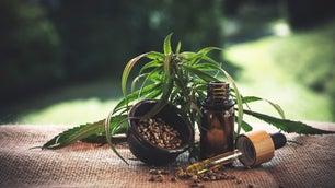 A cannabis plant, ground cannabis, and a vial of green liquid.